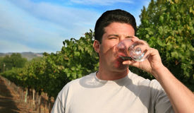 Gosto de vinho Fotos de Stock Royalty Free