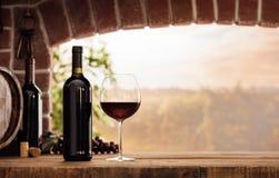 Gosto de vinho tinto na adega imagens de stock royalty free