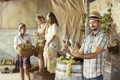 Gosto do fazendeiro um o vidro do vinho branco Tempo de colheita Fotos de Stock Royalty Free