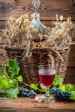 Gosto do vinho tinto em linha reta do garrafão Foto de Stock Royalty Free