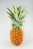 Gosto doce do abacaxi no fundo branco Foto de Stock