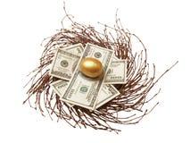 gotówkowy jajeczny złoto zdjęcia royalty free