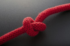 Got Knot? Stock Photography