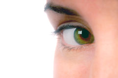Got My Eye On You 2 Royalty Free Stock Photo