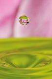 Gota abstracta del agua con la flor adentro Imagen de archivo