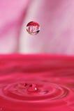 Gota abstracta del agua con la flor adentro Imagen de archivo libre de regalías