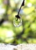 Gota congelada da água Imagens de Stock Royalty Free