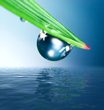 Gota da água Imagens de Stock Royalty Free