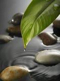 Gota da água Imagem de Stock Royalty Free
