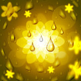 A gota da chuva mostra a flor floral e a pétala ilustração do vetor