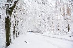 A gota da tempestade da neve 8 polegadas da neve em New York City fotos de stock