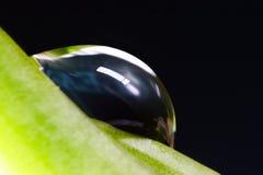 gota de agua Imagen de archivo