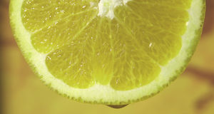 Gota de limão Imagem de Stock Royalty Free