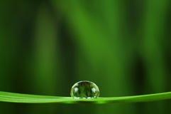 Gota de lluvia Imagenes de archivo