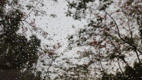 Gota de lluvia en la ventana Fotografía de archivo libre de regalías