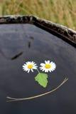 Gota de queda no tanque do jardim Imagem de Stock