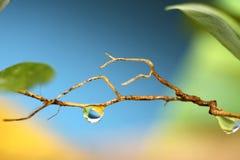 Gota del agua, colores brillantes Imagenes de archivo