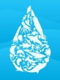 Gota del agua de la vida de mar ilustración del vector