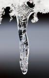 Gota del hielo foto de archivo libre de regalías