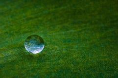 Gota del rocío Imagen de archivo libre de regalías