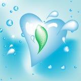 Gota en forma de corazón del agua con la hoja Fotografía de archivo