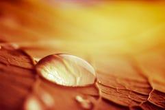 Gota enorme del agua Imagen de archivo libre de regalías