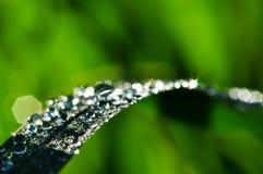 Gota y bokeh de lluvia Imagen de archivo libre de regalías