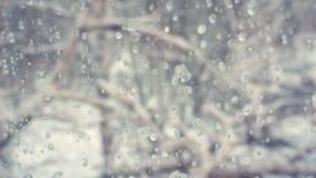 Gotas borradas no vidro vídeos de arquivo