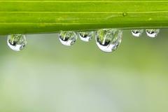 Gotas da água Imagens de Stock