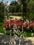 Gotas da água capturadas no ar Imagens de Stock