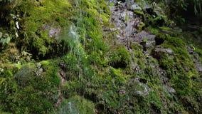 Gotas da água mineral que fluem para baixo video estoque