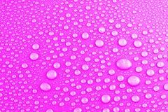 Gotas da água na cor-de-rosa Imagens de Stock Royalty Free