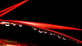 Gotas da água na folha Fotos de Stock Royalty Free