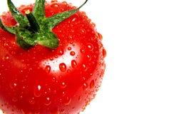 Gotas da água na superfície do tomate maduro vermelho closeup foto de stock