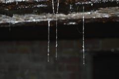 Gotas da água nas linhas Fotografia de Stock