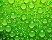 Gotas da água no fundo verde ilustração royalty free