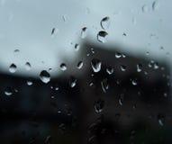 Gotas da chuva Fotografia de Stock