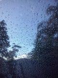 Gotas da chuva de Perth Fotografia de Stock Royalty Free
