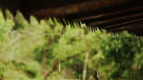 Gotas da chuva do telhado video estoque