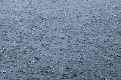 Gotas da chuva em um lago Imagens de Stock