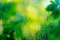 Gotas da chuva em um vidro foto de stock royalty free