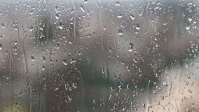 Gotas da chuva na tarde do vidro na primavera video estoque
