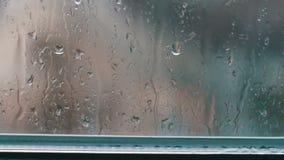 Gotas da chuva na tarde do vidro na primavera filme