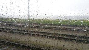 Gotas da chuva no indicador Fotos de Stock Royalty Free