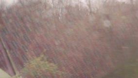 Gotas da chuva no indicador Vista de um trem video estoque