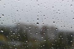 Gotas da chuva no tempo frio Foto de Stock