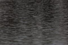 Gotas da chuva que fallling na superfície da água Fotografia de Stock Royalty Free