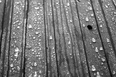Gotas de água no concreto, preto e branco Imagem de Stock