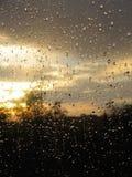 Gotas de agua agradables después de la lluvia Imagen de archivo libre de regalías