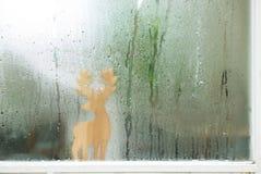 Gotas de agua en el vidrio de la ventana Fotos de archivo libres de regalías